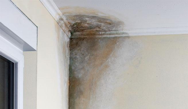 Combatir cuanto antes las humedades en tu casa
